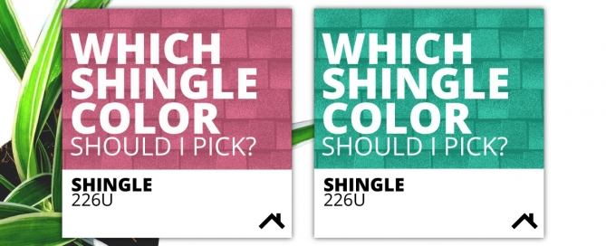 Which Shingle color should I choose